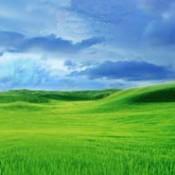 greenpastures_web1